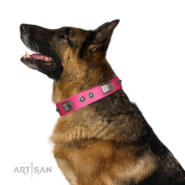 Impressive leather dog collar with studs