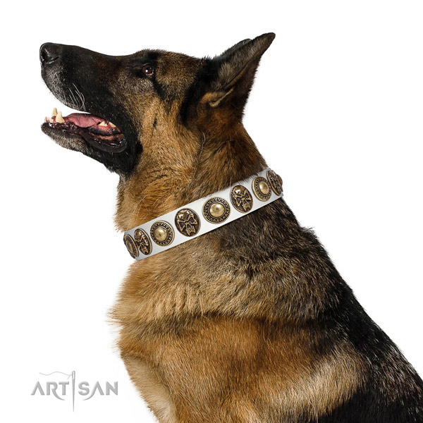 Exceptional leather collar for your attractive pet