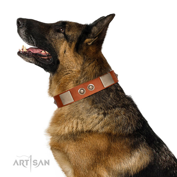 Corrosion resistant hardware on genuine leather dog collar for basic training