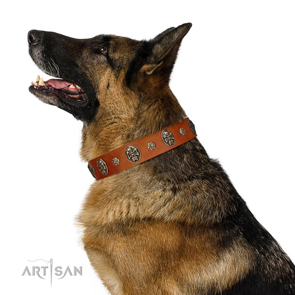 Comfortable wearing dog collar of leather with trendy adornments
