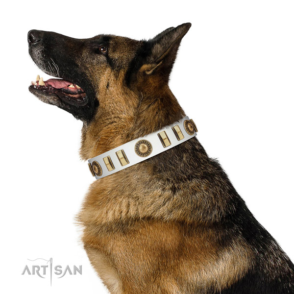 Convenient natural leather dog collar with rust-proof hardware