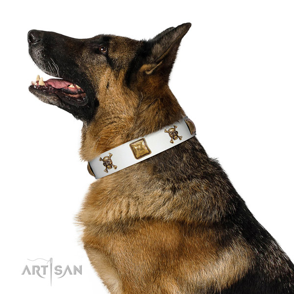 Stylish natural leather dog collar with corrosion proof adornments