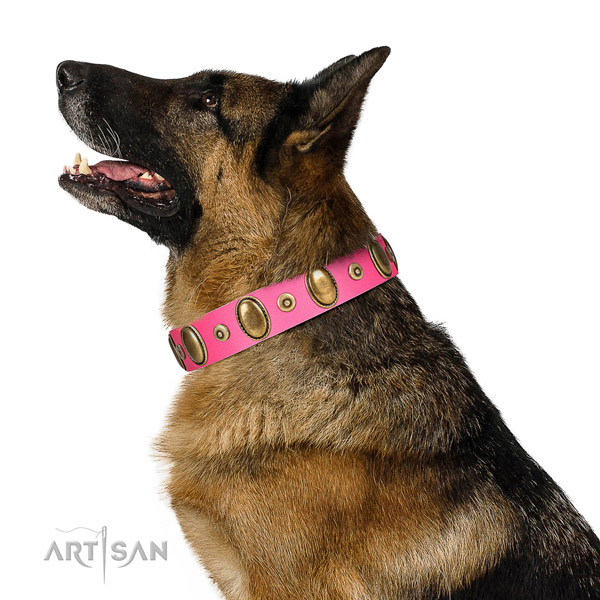 Rust resistant adornments on high quality genuine leather dog collar