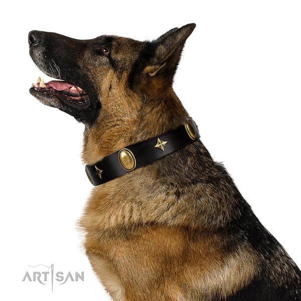Reliable full grain natural leather collar with corrosion proof decorations for your pet