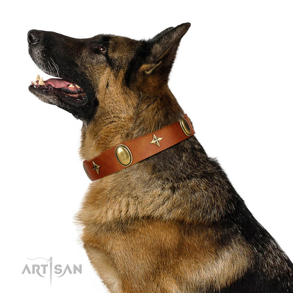 Reliable full grain genuine leather dog collar with rust-proof fittings