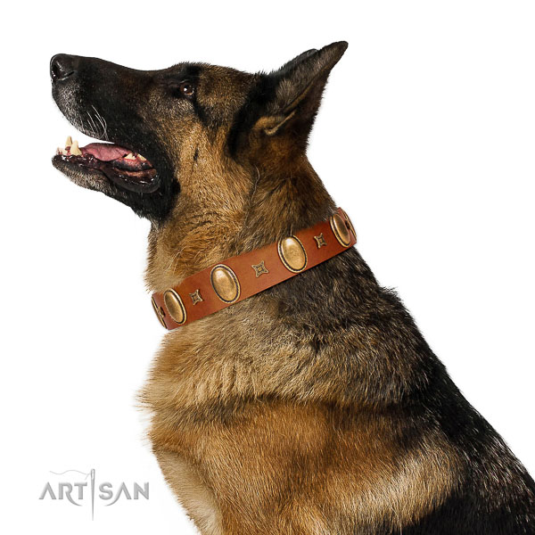 Fashionable embellished leather dog collar of quality material