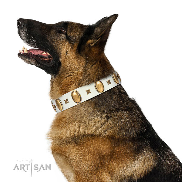 Awesome embellished genuine leather dog collar of quality material