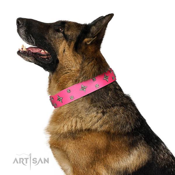 Trendy full grain genuine leather collar with studs for your canine