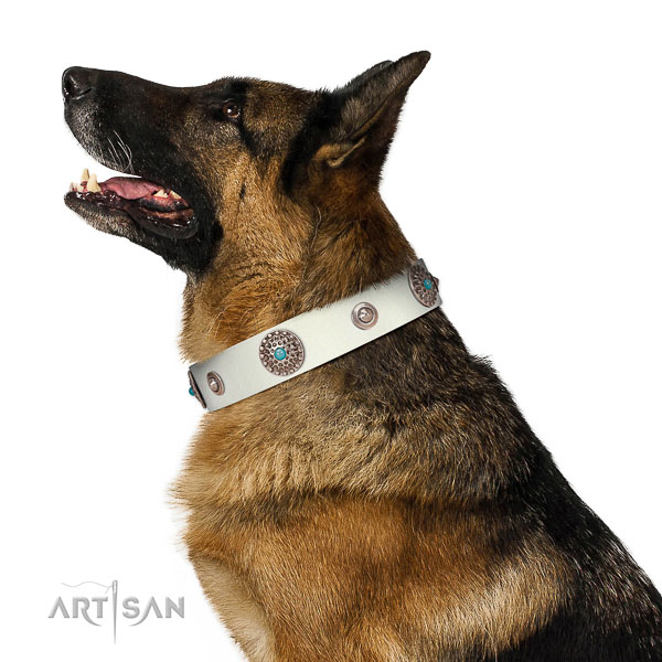 Fine quality dog collar of full grain leather with embellishments