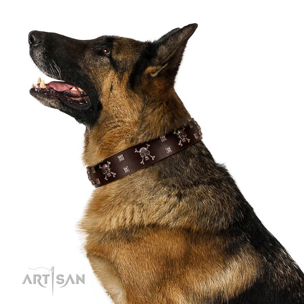 Leather dog collar with non-rusting buckle and D-ring for safe dog control