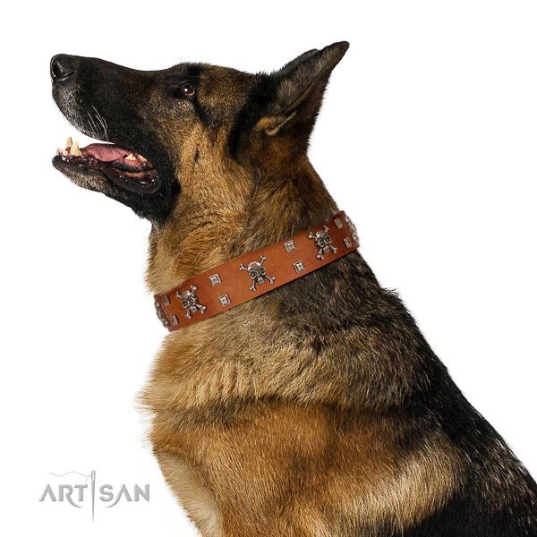 Leather dog collar with non-corrosive elements for confident pet handling