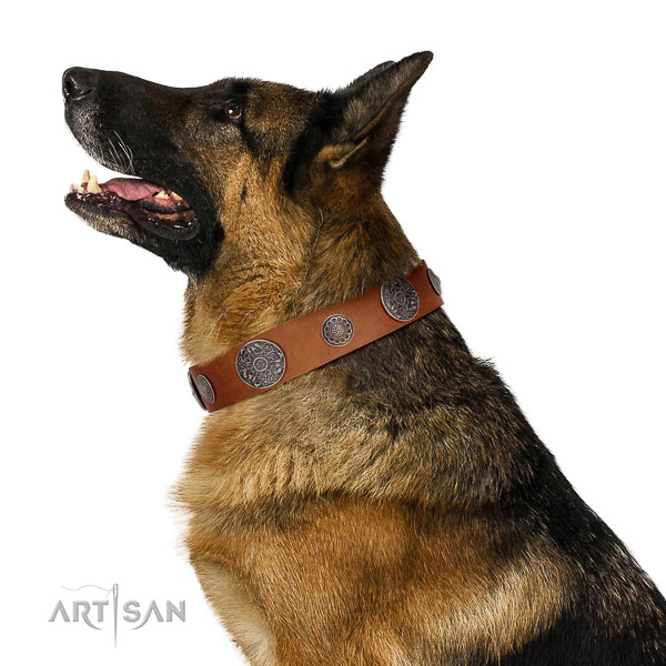 Leather dog collar with non-corrosive buckle and D-ring for safe dog managing