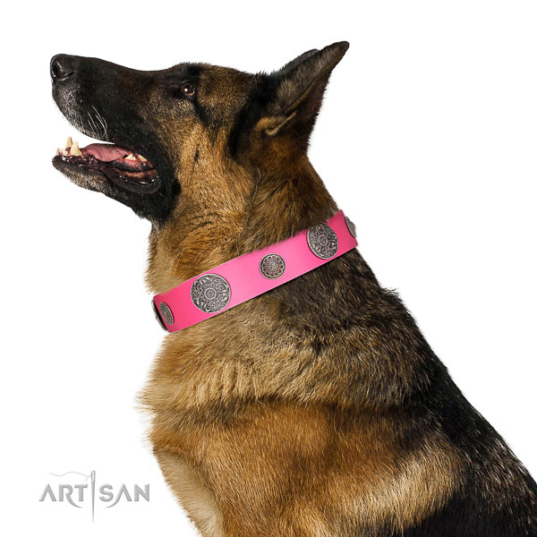 Strong traditional buckle on leather dog collar
