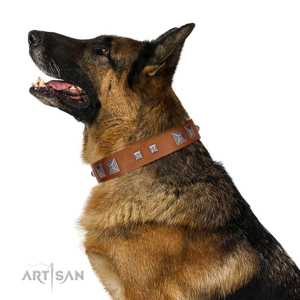 Natural leather dog collar of top rate material with impressive adornments