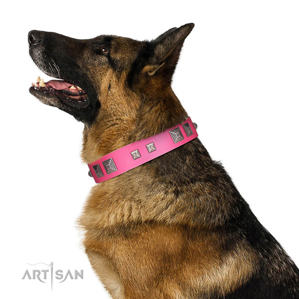 Full grain leather dog collar of reliable material with fashionable adornments