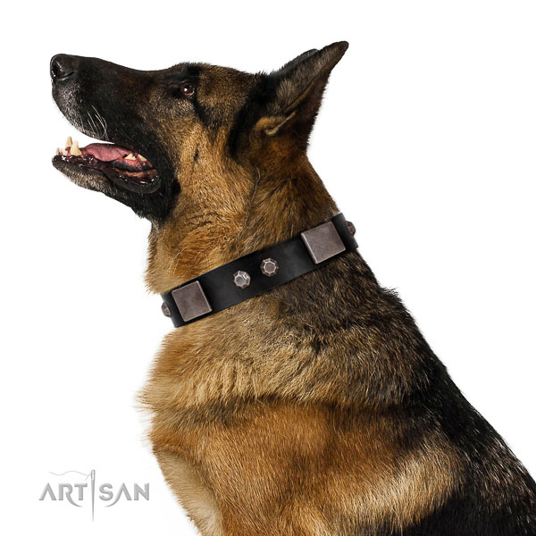Gentle to touch full grain natural leather dog collar with corrosion proof traditional buckle