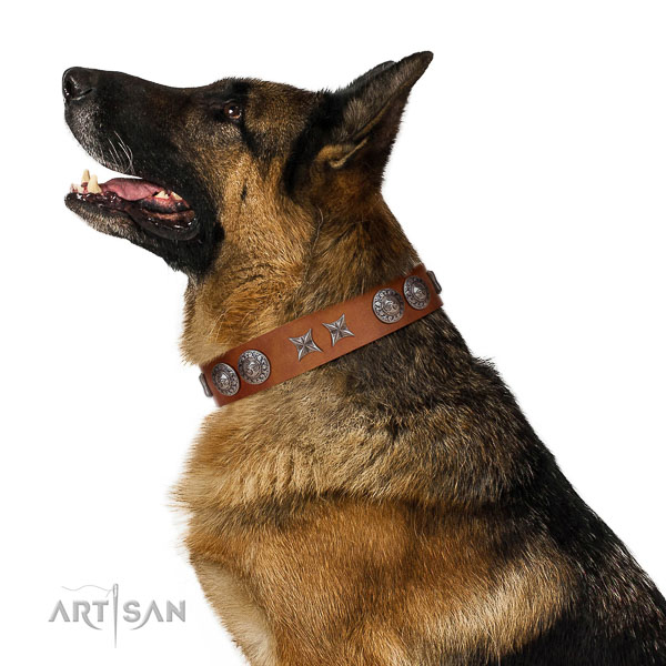 Daily walking soft to touch full grain natural leather dog collar with studs