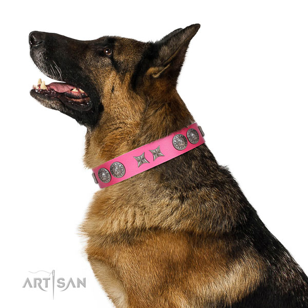 Natural leather dog collar of soft to touch material with unique studs