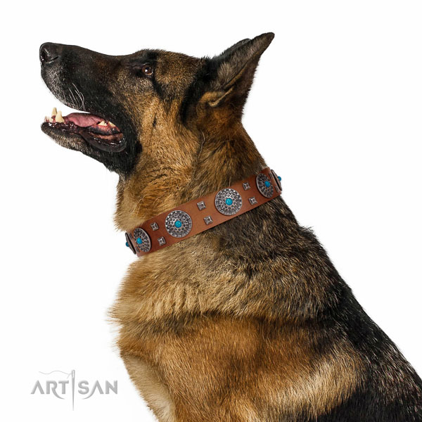 Comfortable wearing full grain natural leather dog collar with trendy decorations