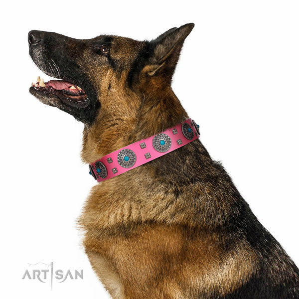 Everyday walking genuine leather dog collar with unusual studs