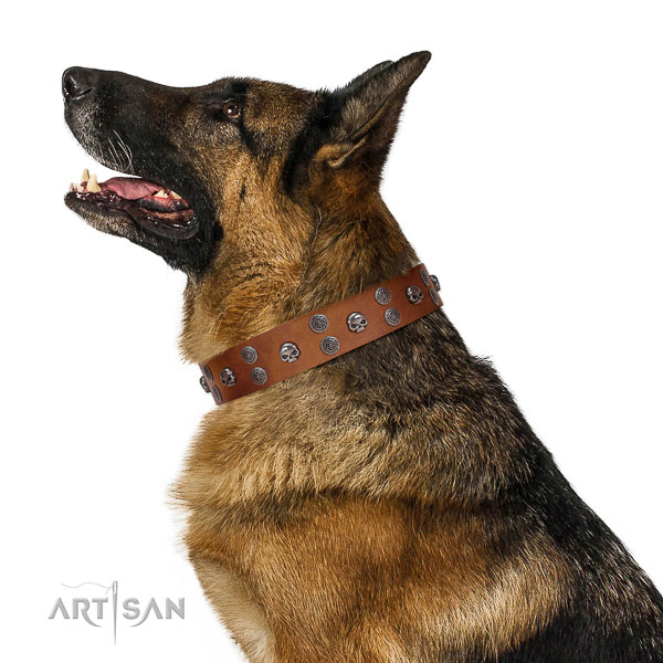 Easy wearing full grain genuine leather dog collar with decorations