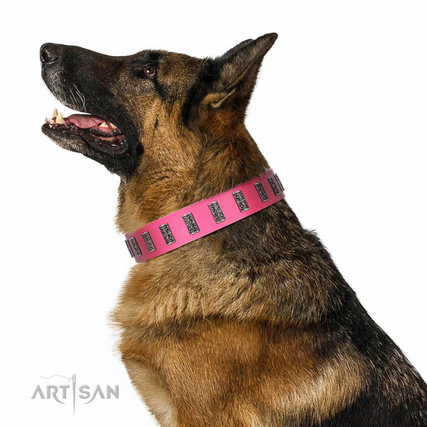 Corrosion resistant D-ring on genuine leather dog collar for stylish walking your dog