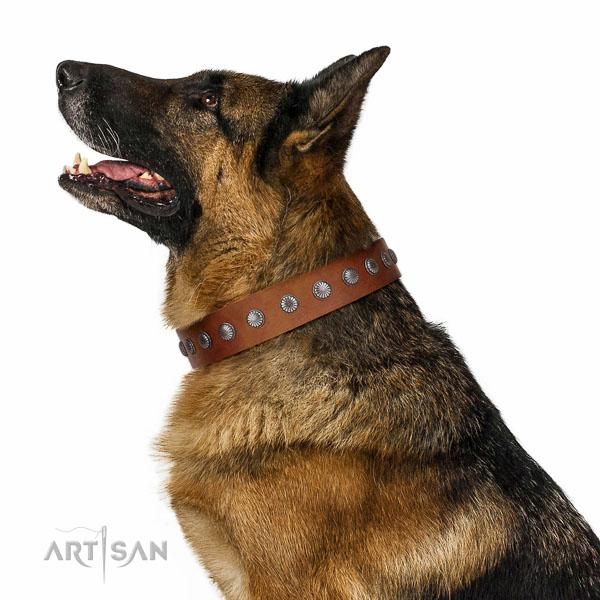 Soft natural leather dog collar with decorations for everyday use