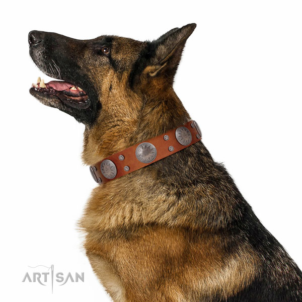Best quality natural leather dog collar with significant embellishments