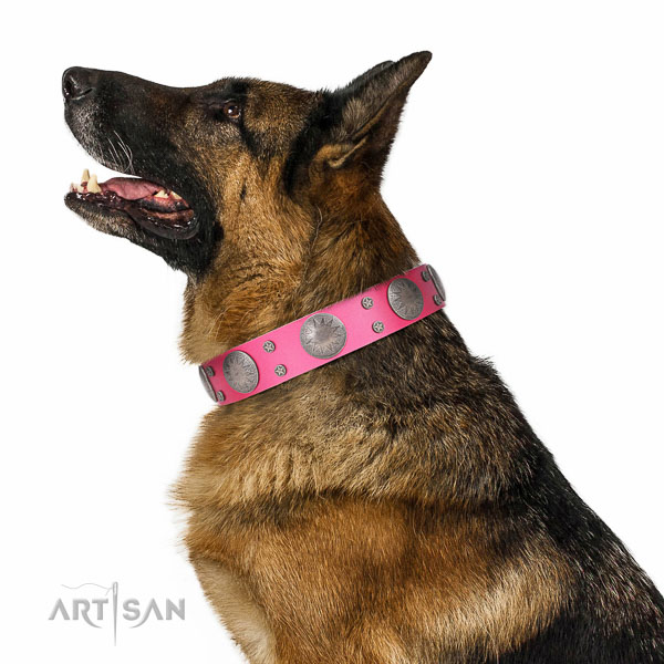 Comfy wearing adorned natural leather collar for your four-legged friend