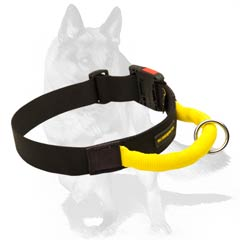 Dog Collar made of Heavy duty Nylon
