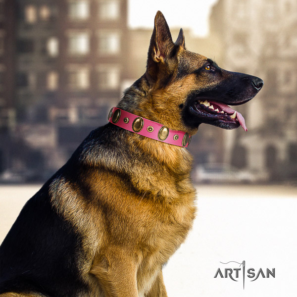 German Shepherd Dog full grain genuine leather dog collar with adornments for everyday use