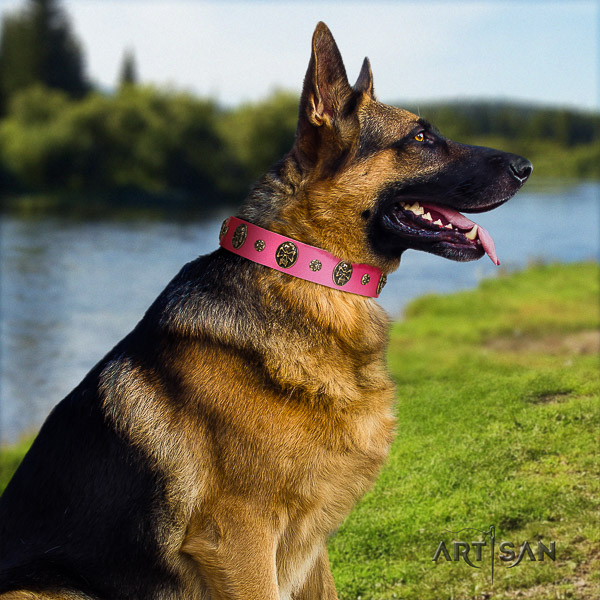 German Shepherd Dog genuine leather dog collar with adornments for easy wearing