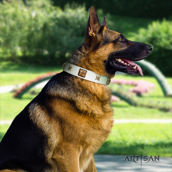 German Shepherd Dog full grain genuine leather dog collar with decorations for walking