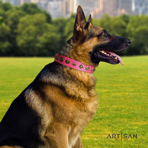 German Shepherd Dog full grain genuine leather dog collar with adornments for easy wearing