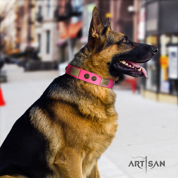 German Shepherd Dog genuine leather dog collar with adornments for everyday use