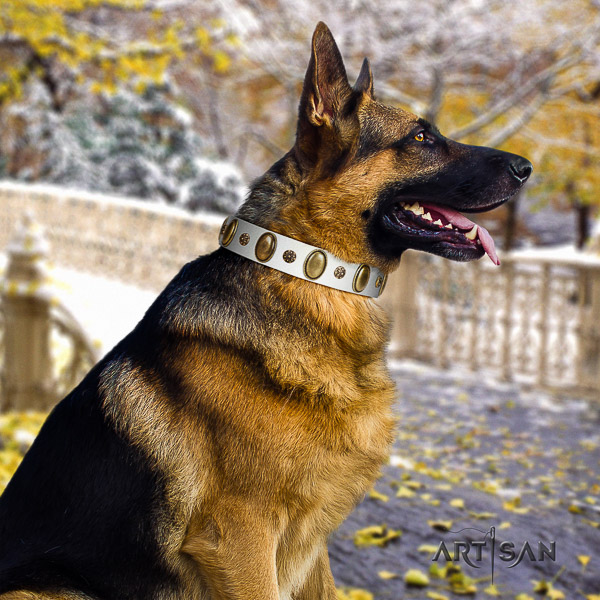 German Shepherd Dog full grain genuine leather dog collar with embellishments for handy use