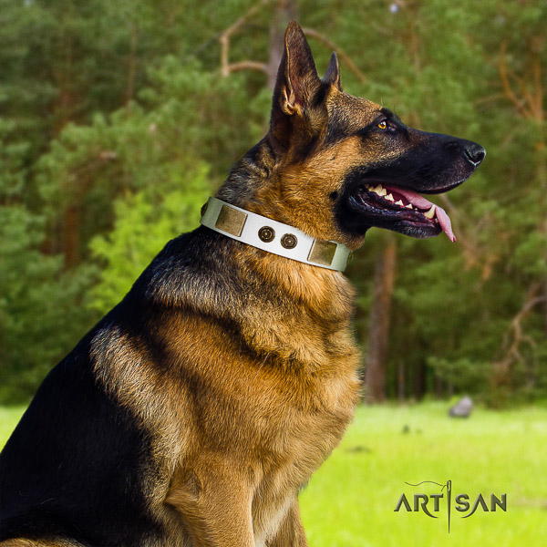 German Shepherd Dog natural genuine leather dog collar with embellishments for stylish walking