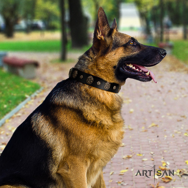 German Shepherd Dog natural genuine leather dog collar with embellishments for comfy wearing