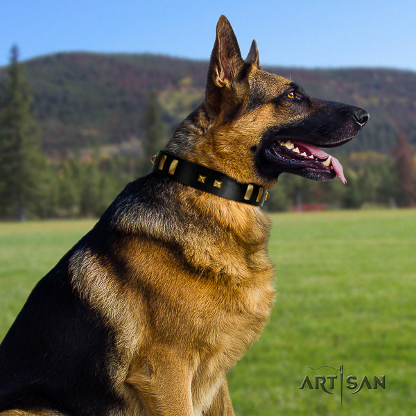German Shepherd Dog full grain leather dog collar with decorations for everyday use