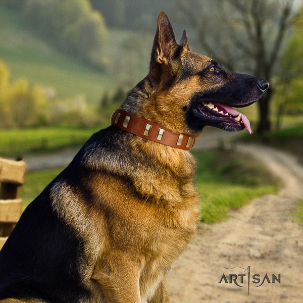German Shepherd Dog full grain natural leather dog collar with studs for comfy wearing
