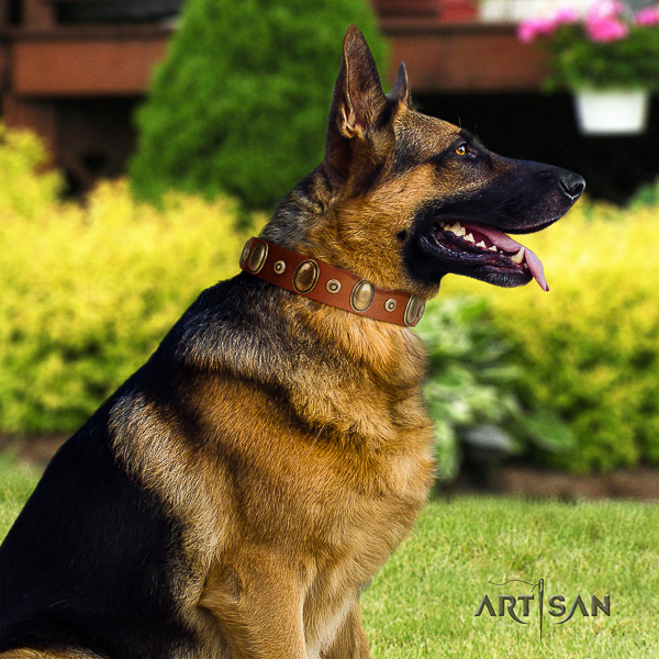 German Shepherd Dog full grain natural leather dog collar with decorations for stylish walking