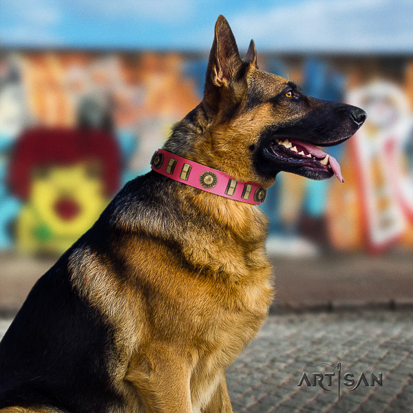 German Shepherd Dog full grain natural leather dog collar with embellishments for comfy wearing