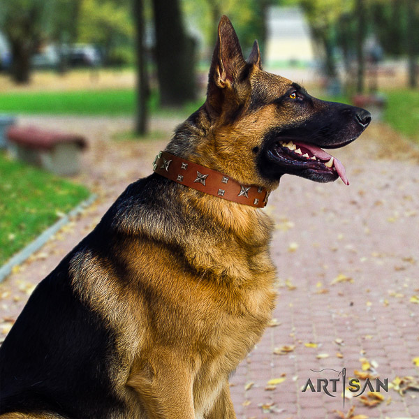 German Shepherd Dog amazing adorned genuine leather dog collar