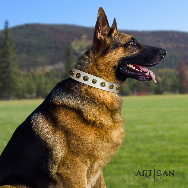 German Shepherd Dog leather dog collar with decorations for daily walking