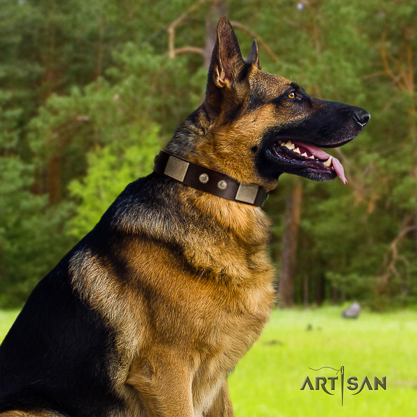 German Shepherd Dog natural genuine leather dog collar with adornments for easy wearing