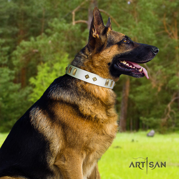 German Shepherd Dog full grain leather dog collar with embellishments for walking