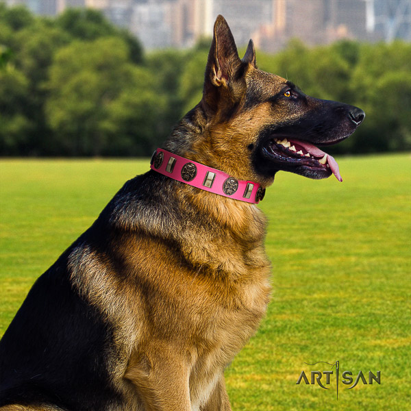 German Shepherd Dog full grain genuine leather dog collar with decorations for fancy walking