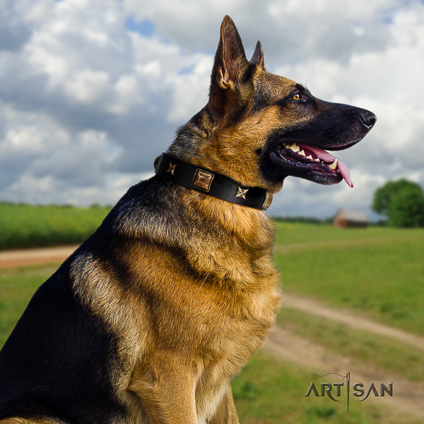 German Shepherd Dog leather dog collar with adornments for comfortable wearing