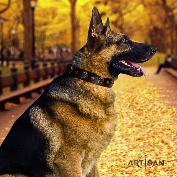 German Shepherd Dog full grain natural leather dog collar with decorations for comfortable wearing