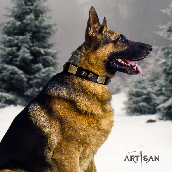 German Shepherd Dog natural genuine leather dog collar with adornments for handy use